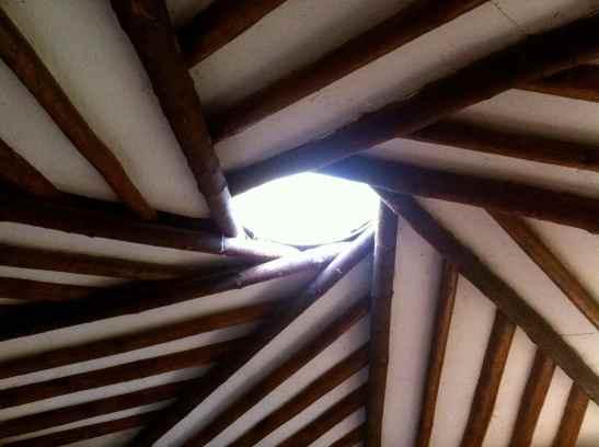 Hogan roof