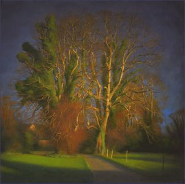 Lime Trees